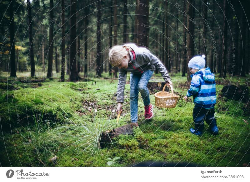 Zwei Kinder am Pilze sammeln im Wald Außenaufnahme Herbst Natur Kindheit pilze sammeln pilze suchen Moos Moosteppich Farbfoto Umwelt natürlich frisch Waldboden