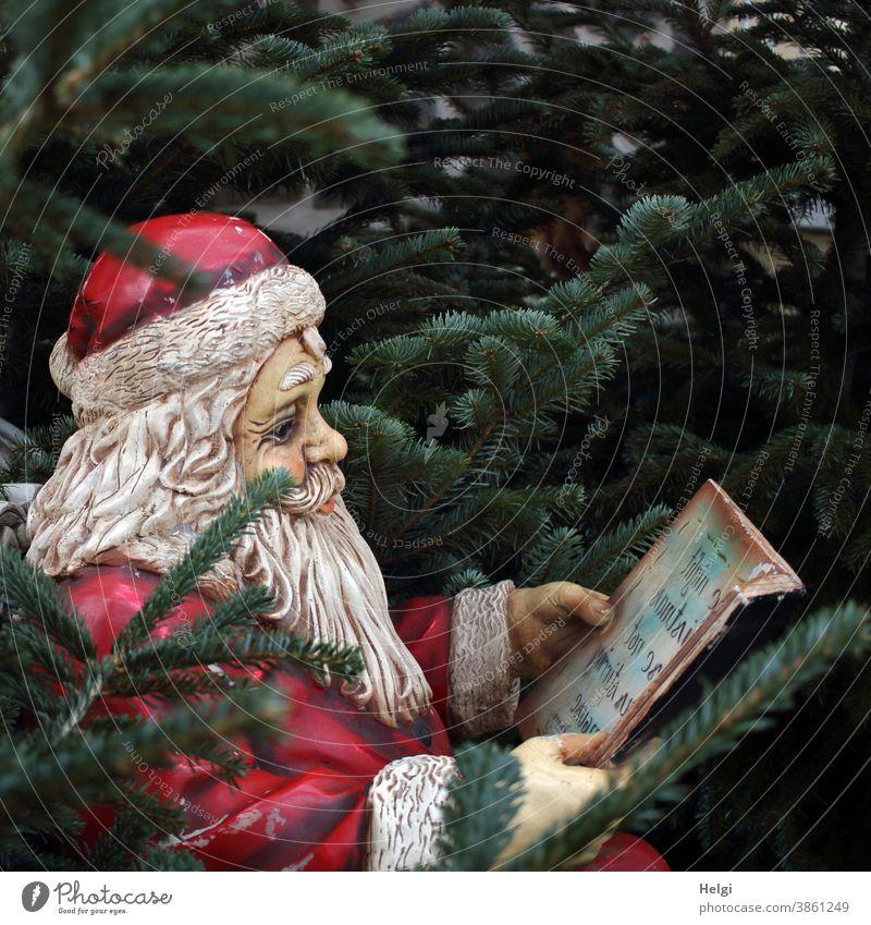 von drauß vom Walde komm ich her ... - Deko-Weihnachtsmann sitzt zwischen Tannenbäumen und hält ein Buch in den Händen Weihnachten Nikolaus Advent