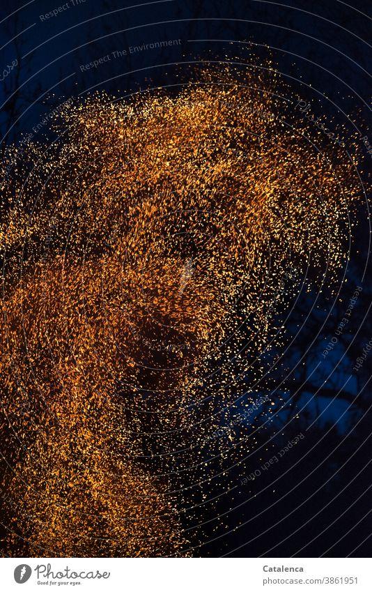 Funken steigen auf in den nächtlichen Himmel.. heiß hoch Feuer brennen Brand Nacht dunkel Natur Element Feuerstelle wärmen gefährlich Wandel und Veränderung