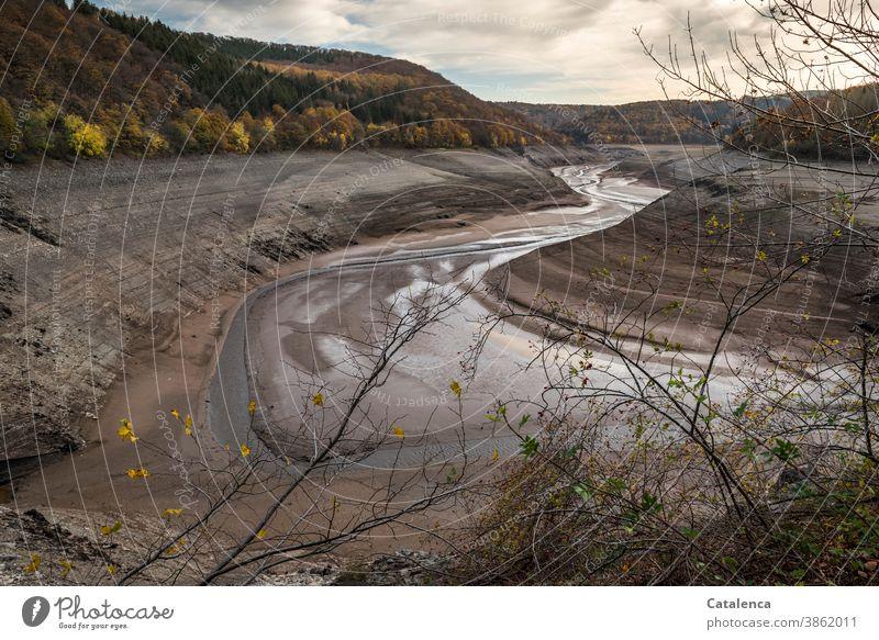 Entleerte Urfttalsperre im November Landschaft Natur Talsperre See Stausee niedriger Wasserstand Fluß Lehm Steine wald laub herbstlich Herbst Himmel Wolken Brun