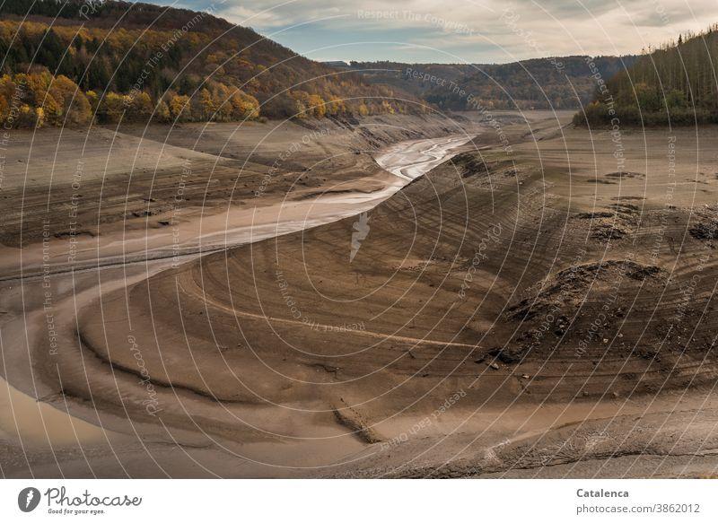 Die trocken gefallene Urfttalsperre herbstlich Wolken Himmel Herbst laub wald Steine Lehm leer Fluß niedriger Wasserstand Stausee Landschaft Natur Talsperre See