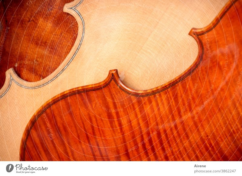 Farbkombination | philharmonisch Geige Holz Musikinstrument Klang Ornament Saiteninstrumente elegant Kultur Klangkörper Kontrast schwungvoll Harmonie