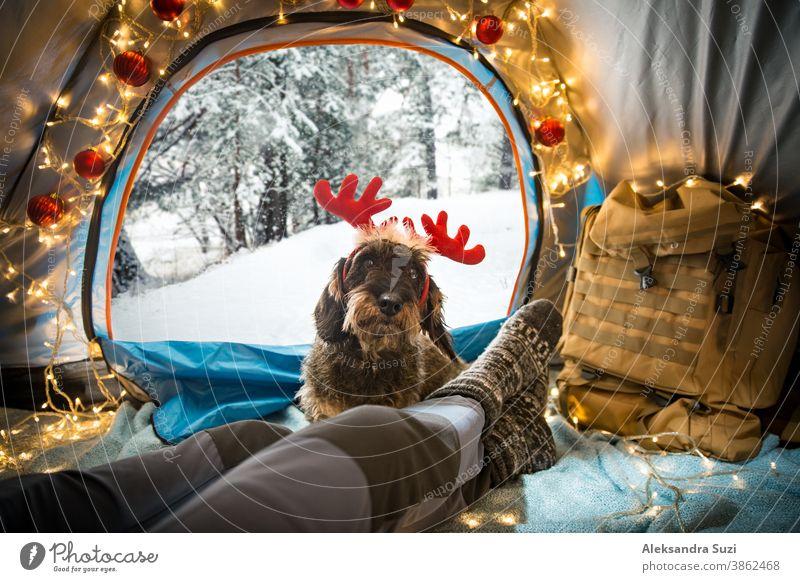 Ein Mann, der in einem mit Weihnachtsbeleuchtung geschmückten Zelt liegt und warme Holzsocken trägt. Wunderschöner, schneebedeckter, wilder Winterwald. Selbstisolation und soziale Distanzierung während der Feiertage. Reisen mit Hund