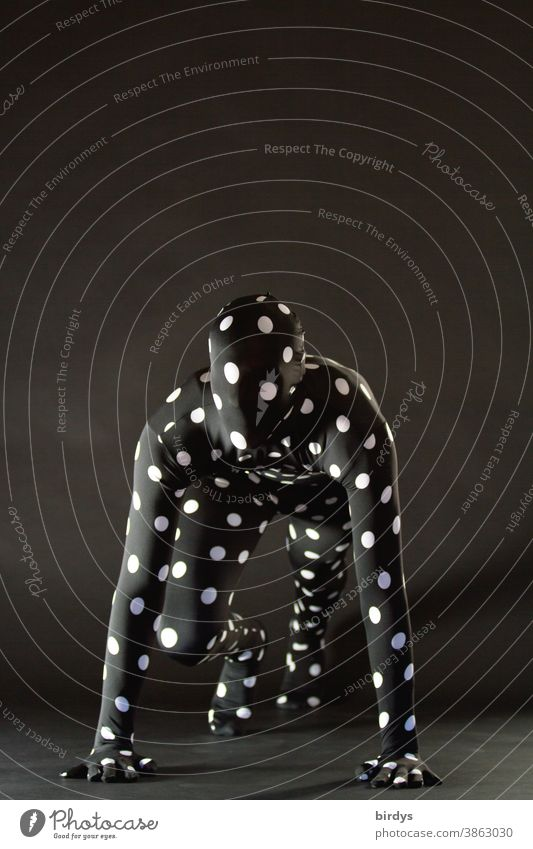 androgyne Person in einem gepunktetem  Morphsuite - Kostüm klettern starten Körperspannung Mensch Spiderman Aktion Punkte übernatürlich anonym unkenntlich