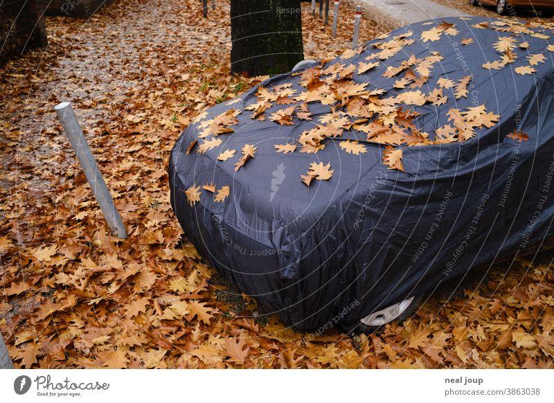 Auto unter Abdeckplane, bedeckt mit Herbstlaub Jahreszeit Laub Blätter Parken Ruhe Schlafen PKW Hülle Versteck Tarnung dunkel Schwarz Braun Warten