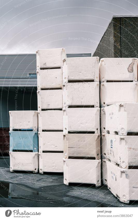 Gestapelte Styroporboxen im Lager am Hafen Fischerei Industrie Lagerhalle Behälter Kiste weiß blau grau Außenaufnahme Güterverkehr & Logistik Wirtschaft Ware