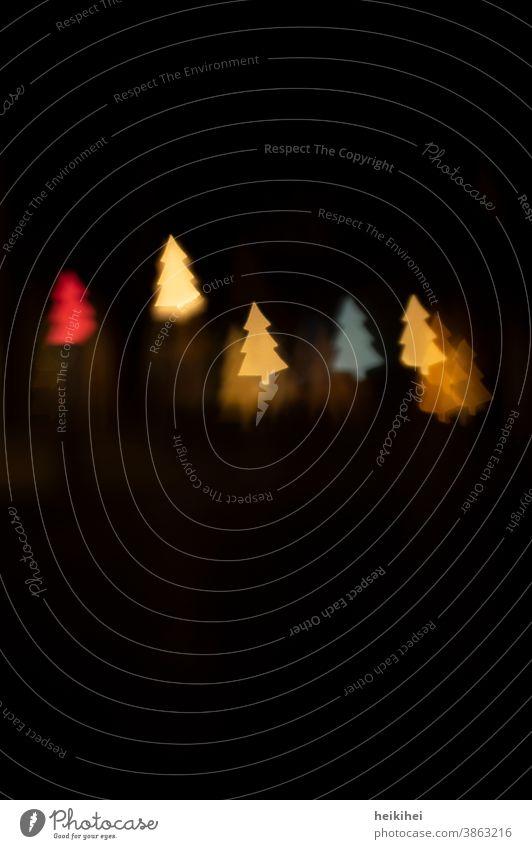 Tanzende Licht-Tannenbäume Tannenbaum Weihnachten & Advent Weihnachtsbaum Weihnachtsdekoration Dekoration & Verzierung Winter Baum Menschenleer Christbaumkugel