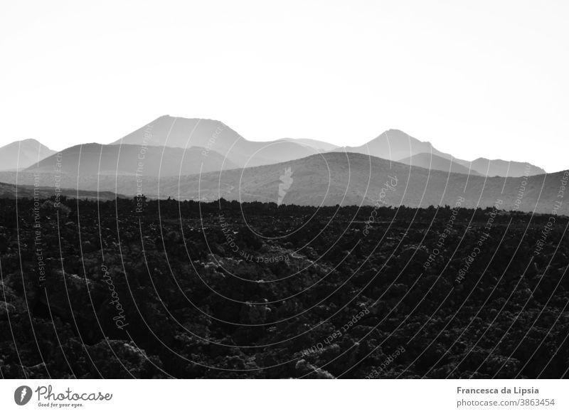 Lavafeld auf Lanzarote Vulkan Landschaft Schwarzweißfoto Außenaufnahme Ferien & Urlaub & Reisen Menschenleer Insel Berge u. Gebirge Natur Ferne
