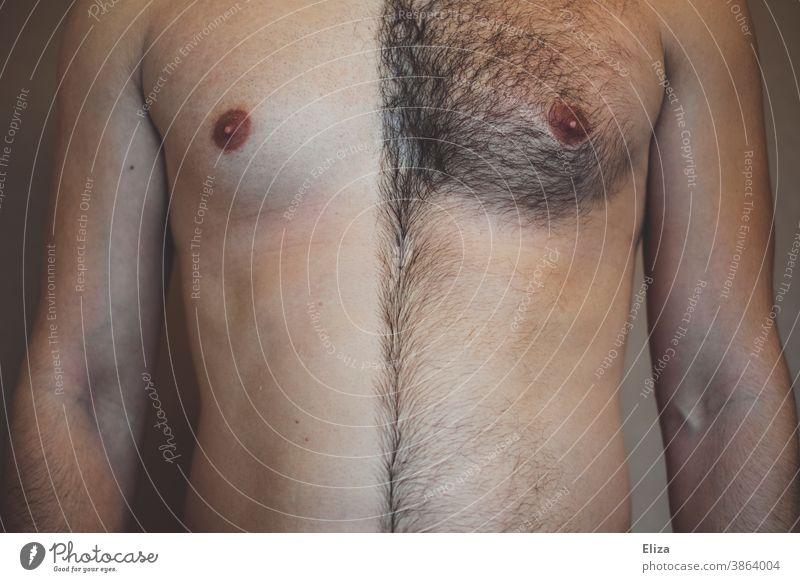 Männerbrust, die eine Hälfte rasiert und die andere behaart. Rasieren behaarung Mann Brust unentschlossen Rasur Körperbehaarung Körperpflege Behaarung maskulin