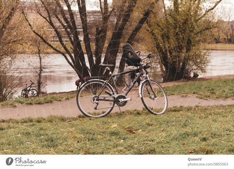 Fahrräder an der Elbufer in Dresden Fahrrad Fahrradfahren Kindersitz Verkehr Außenaufnahme Wege & Pfade Straßenverkehr Freizeit & Hobby Bewegung Fahrradweg
