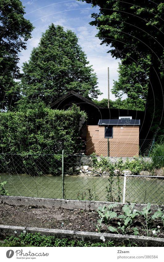 Kleingartenidyll am Bacherl Sommer Schönes Wetter Baum Sträucher Flussufer Hütte Kleingartenkolonie ruhig nachhaltig Natur Ordnung Umwelt Gemüsebeet