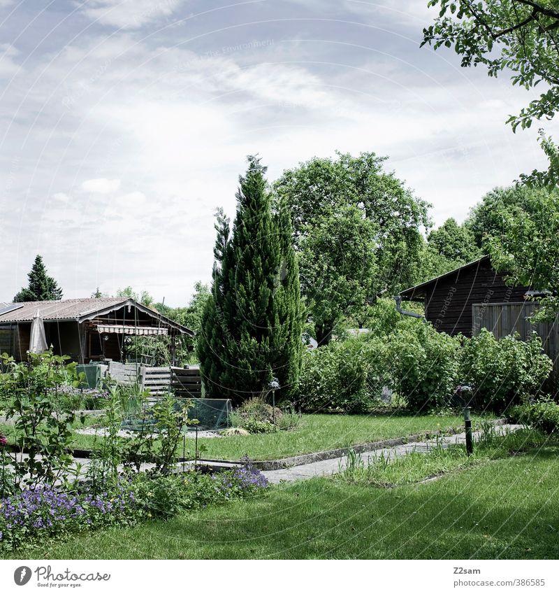 schrebergarten Himmel Natur Ferien & Urlaub & Reisen grün Sommer Baum Erholung Einsamkeit ruhig Wolken Umwelt Wiese Gras natürlich Garten Freizeit & Hobby