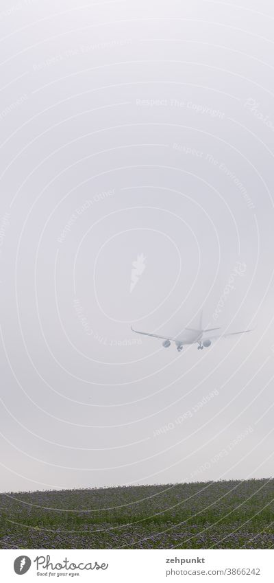 Ein Airbus A359 verschwindet beim Landeanflug im Hochnebel. Flugzeug landung Nebel Wiese Blumenwiese verschwinden Luftverkehr Flughafen Flugzeuglandung Wolken