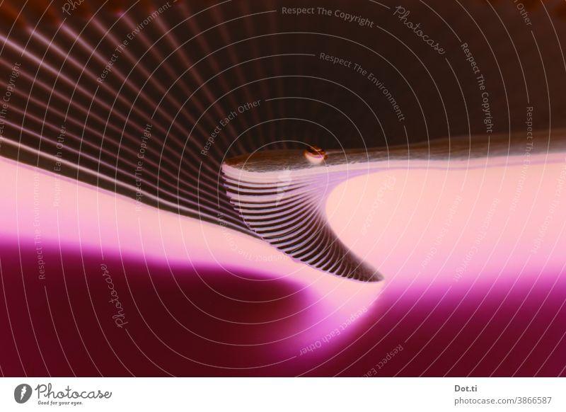Wirbel Struktur abstrakt aufgefächert pink Licht