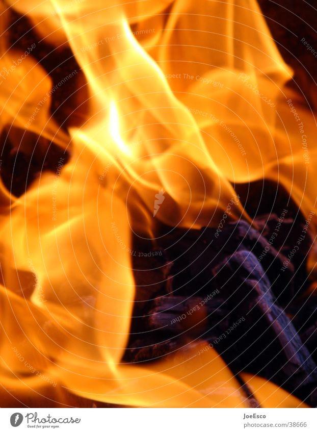 light my fire 2 Erholung Freizeit & Hobby Häusliches Leben Kamin Feste & Feiern Jahrmarkt Natur Feuer Wärme heiß schön gelb rot Brand Glut orange Grillsaison