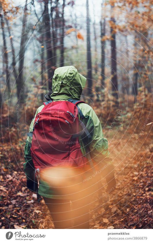 Frau mit Rucksack wandert an einem herbstlich kalten Tag durch einen Wald. Rückenansicht einer aktiven Frau mittleren Alters, die einen Waldweg entlang geht und aktiv Zeit verbringt
