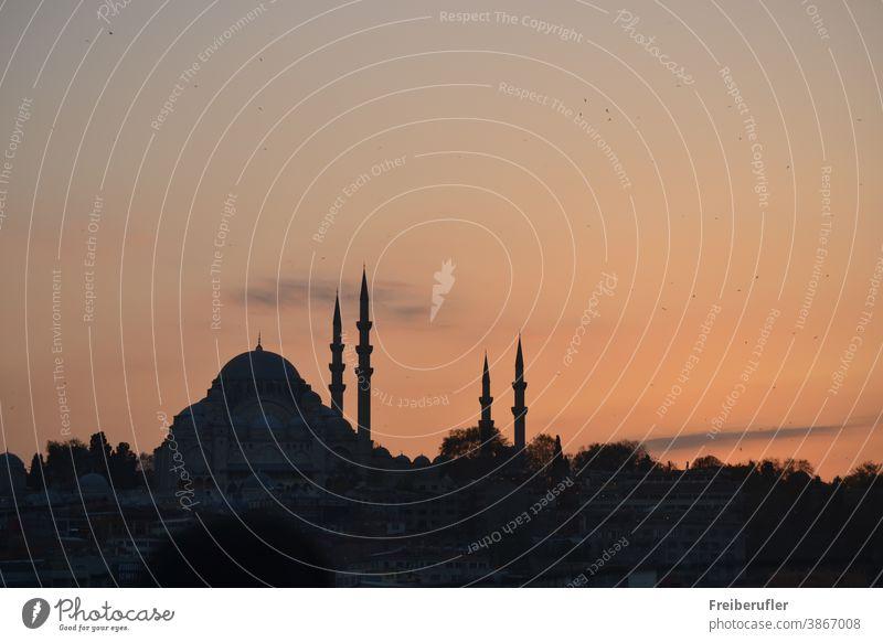 Istanbul Silhouette Moschee Abendrot Minarette Kuppel Islam Religion Mittelalterliche Moschee Osmanischebauwerk Vier Minaretten Moschee Abnedort Abenddämmerung