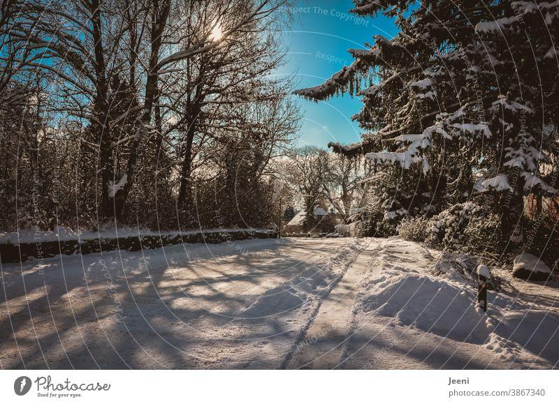 Verschneite schneebedeckte Straße in einem kleinen Dörfchen an einem sonnigen kalten Wintertag - der Himmel leuchtet blau - die Sonne scheint - schneebehangene Baumwipfel am Wegesrand **100**