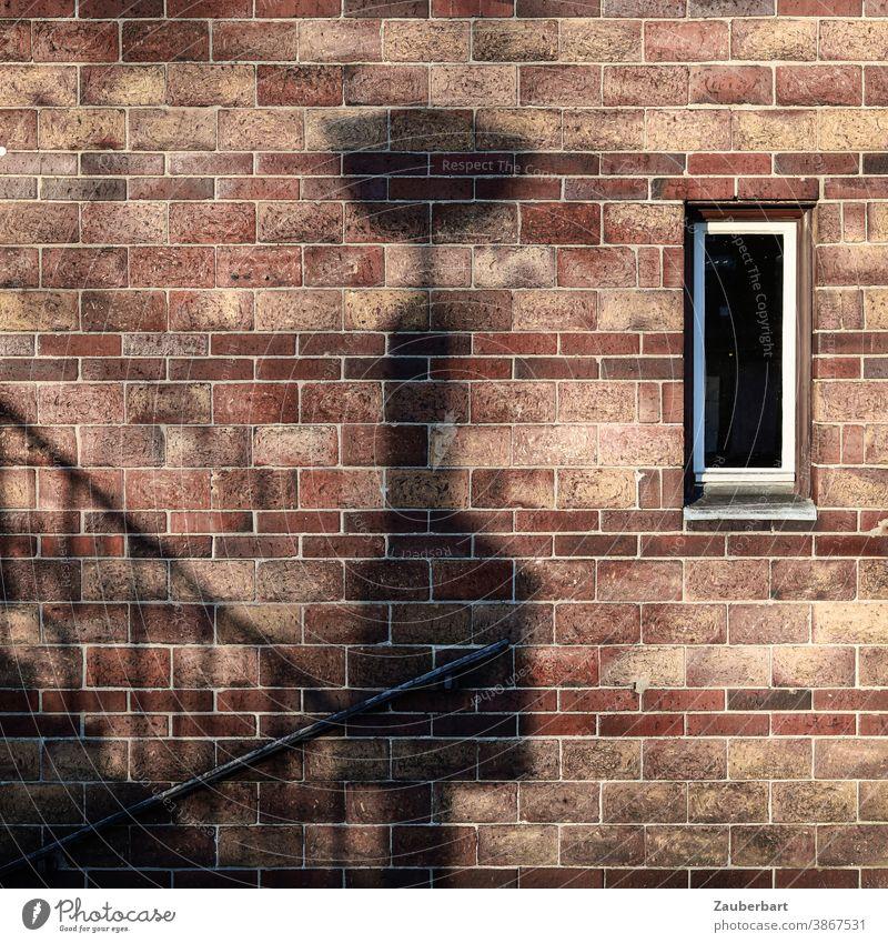 Ziegelwand, Schatten einer Laterne, Treppe und Fenster Geländer Treppengeländer braun rotbraun schwarz Aufstieg Abstieg