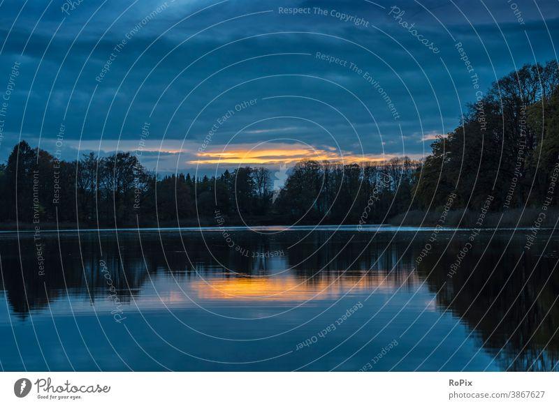 Sonnenuntergang an einem ruhigen See. Herbst Wald Waldrand autumn Busch Gebüsch wood Natur biotop Naturschutz Umwelt Umweltschutz fall season Jahreszeit
