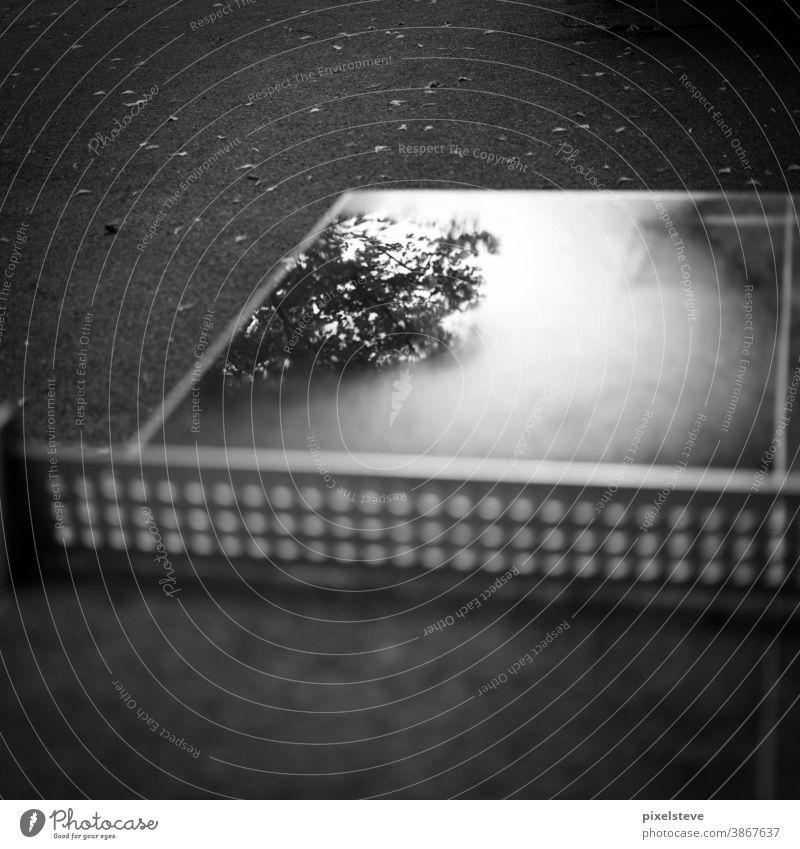 Pfütze auf einer Tischtennisplatte Herbst Herbstwetter Herbstgefühle Depression Depressionen depressiv Angst Mobbing mobbingopfer angststörung Trauer Traum