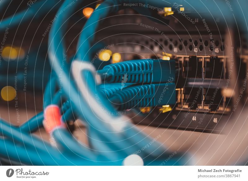 Detailaufnahme von Netzwerkkabeln in einem Serverschrank Technik & Technologie Daten Internet Kabel Computer Zentrum Information Gerät Ethernet Business