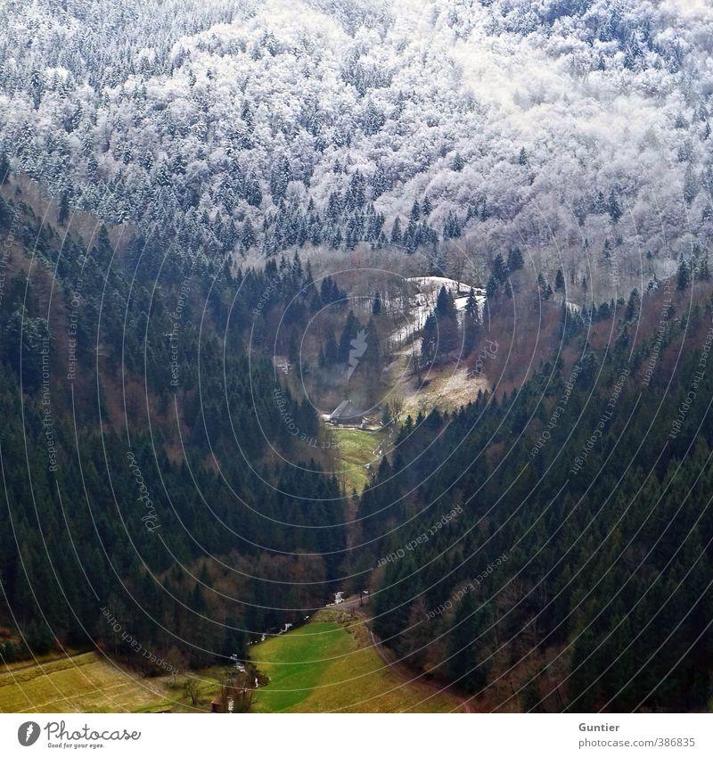 Wandel Natur Landschaft Urelemente Herbst Winter Klima Klimawandel Wetter Schnee Baum Gras Feld Wald Hügel Berge u. Gebirge braun grün weiß Wandel & Veränderung