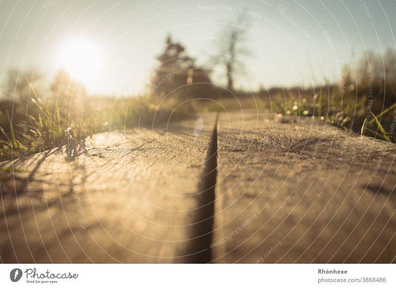 In der Froschperspektive über den Bohlensteg, der Sonne entgegen Bohlenweg Landschaft Farbfoto Natur Menschenleer Umwelt Himmel Pflanze Schönes Wetter