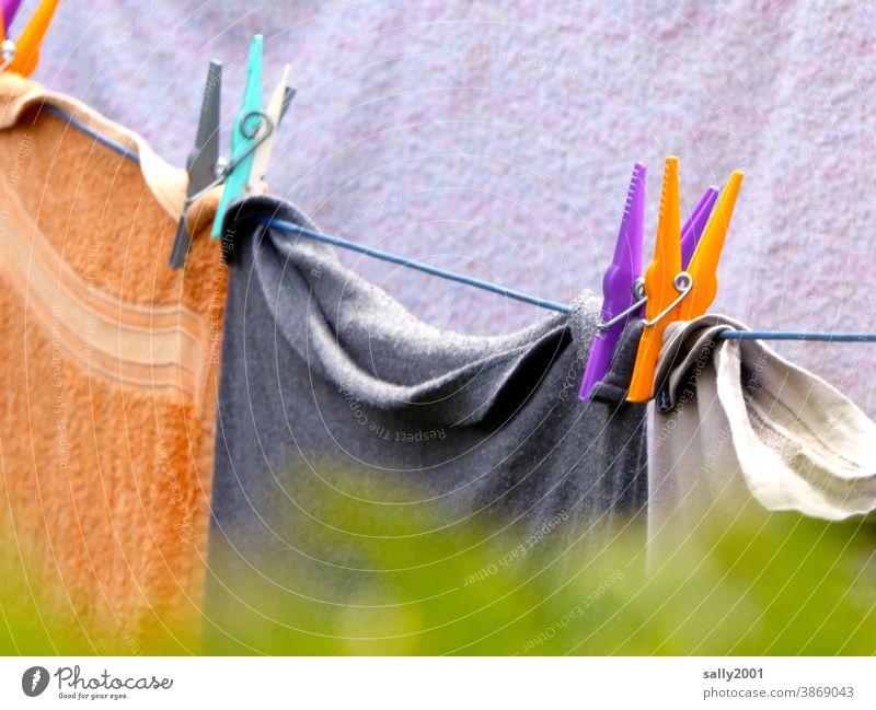 Farbkombination... an der Wäscheleine... Wäscheklammer Waschtag waschen aufhängen trocknen bunt Handtuch Handtücher Haushalt draußen Hecke Garten Seil sauber