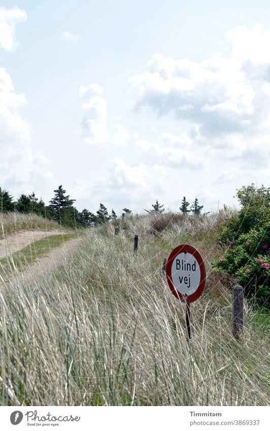 Ein schöner Weg mit hübschem Hinweisschild Dänemark Urlaub Sackgasse Menschenleer Verkehr Schilder & Markierungen Flora Himmel Wolken Urlaubsstimmung Gräser