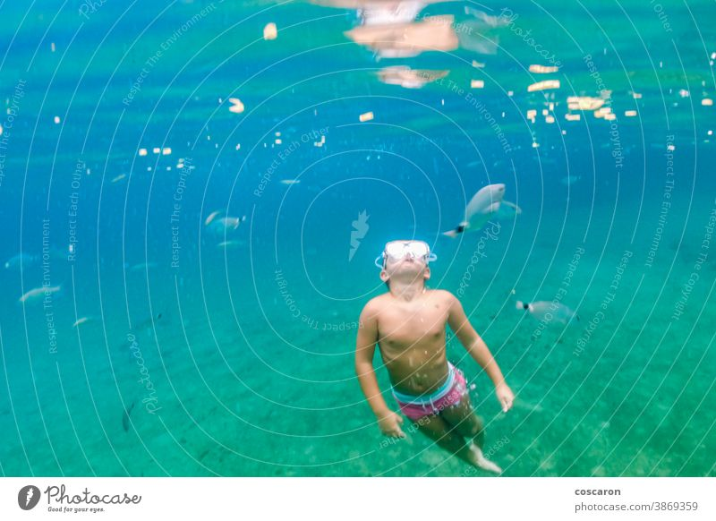 Kleinkind taucht im Mittelmeer aktiv Abenteuer-Camp Tiere aqua Baby Bahamas Transparente Badeurlaub Karibik-Tournee heiter Kind Kindheit Kindererholung niedlich