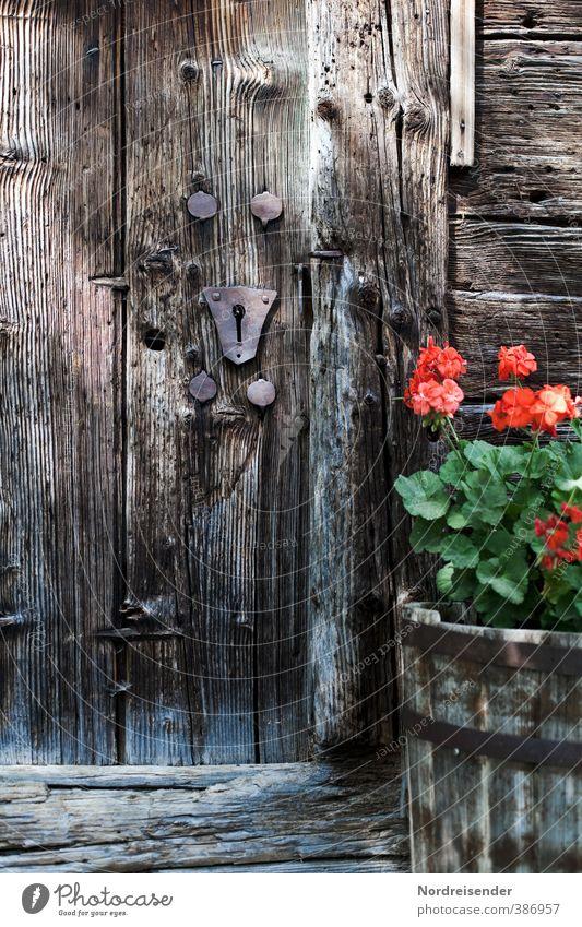 AST6 Inntal | Holzig alt Pflanze Erholung Blume ruhig Architektur Gebäude braun Fassade Wohnung Zufriedenheit authentisch Häusliches Leben Warmherzigkeit