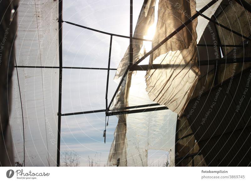 licht- und winddurchlässiges Gewächshaus draußen drinnen Zerstörung Fensterblick Ausblick Stück Himmel eingesperrt Verfall gefangen Stille Schattendasein