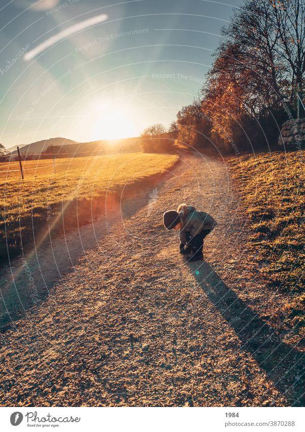 Spaziergang in der Natur Spielen Sonnenlicht Kind Kindheit Fröhlichkeit Außenaufnahme Freude entdecken Sammeln