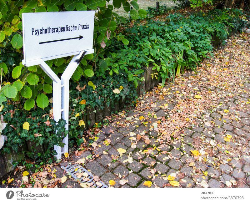 Psychotherapeutische Praxis Psychologie psychotherapie Therapie Schilder & Markierungen Pfeil Hinweisschild Wege & Pfade Pflanze