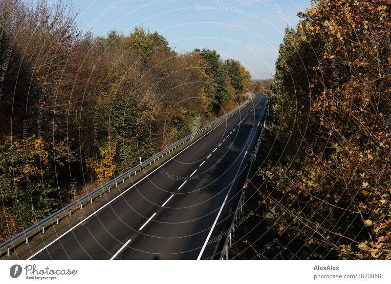 Landschaftsaufnahme einer leeren Straße, die mit Bäumen und Leitplanken umgeben ist im Herbst Landstraße Kraftfahrtsstraße Schnellstraße Mittelstreifen Teer