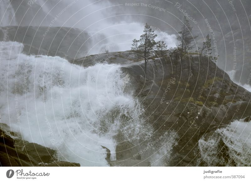 Norwegen Umwelt Natur Landschaft Pflanze Wasser Baum Felsen Wasserfall Låtefossen dunkel nass natürlich wild Stimmung Klima fließen Rauschen Gischt Farbfoto