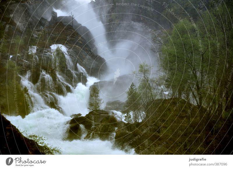 Norwegen Natur Wasser Baum Landschaft Umwelt kalt natürlich Stimmung Kraft wild Klima nass Fluss fließen Wasserfall