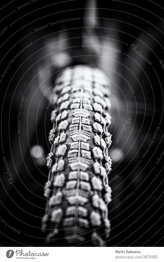 gefrorener Fahrradreifen Aktion aktiv Radfahren Konkurrenz Fahrradfahren Radfahrer neblig Wald Rahmen Vorderseite Frost frostig Spaß Hobby Eis Landschaft