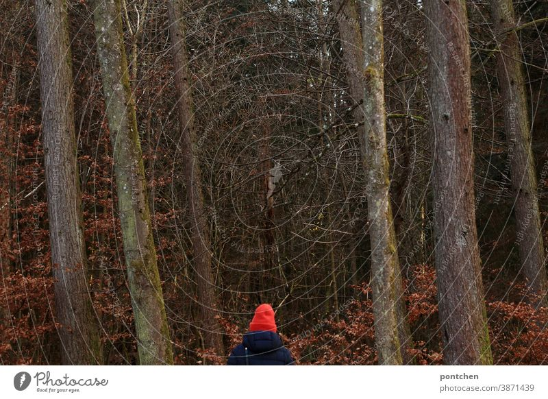 Eine Frau mit knallig roter Mütze und Wintermantel steht im Wald knallrot bäume herbst winter winterkleidung laub blätter erholung Sauerstoff Herbstlaub Natur
