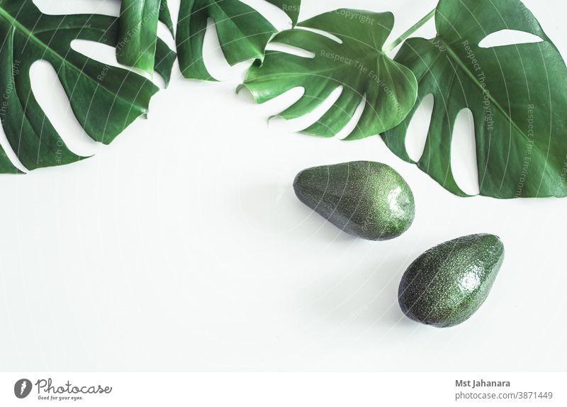 Avocado mit tropischen Blättern auf weißem Hintergrund Salatbeilage vereinzelt frisch Lebensmittel Frucht grün Gesundheit Natur organisch Sommer Vegetarier