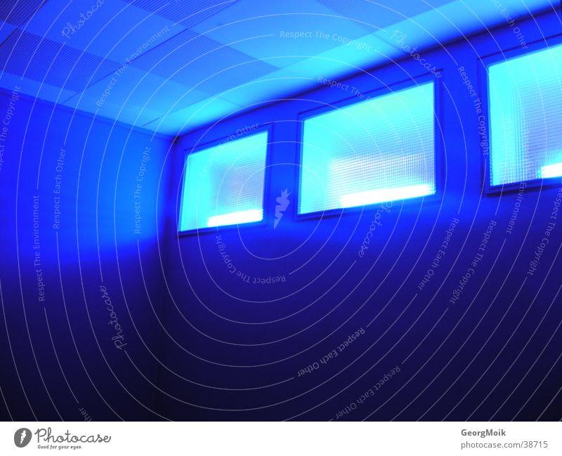 blue lights Licht Warnleuchte Fenster Fototechnik blau Raum streichen Stehleiter 3 drei Beleuchtung room