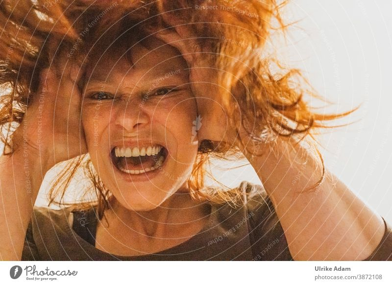 Der Corona Schrei - Frau rauft sich die Haare, hält sich die Ohren zu und schreit ihre Verzweiflung heraus Wut Ohnmacht Schreien Ohren zu halten Haare raufen