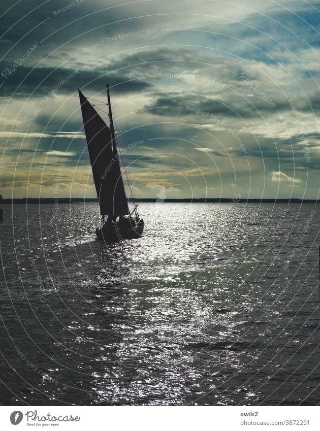 Hart Steuerbord Bootsfahrt Schifffahrt Zeesboot Rundreise Bucht Saaler Bodden Vorpommersche Boddenlandschaft Schönes Wetter Horizont Wolken Himmel Wasser