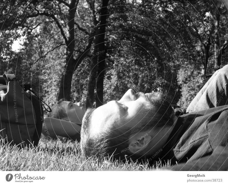 Londoner Parknickerchen Mann Baum Wiese schlafen