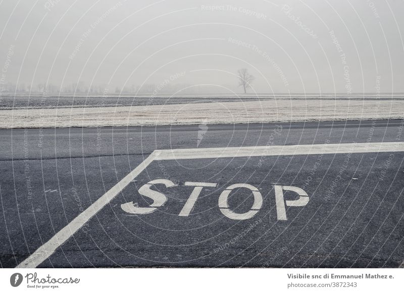 mit Frost bedeckte Straße glacé Raureif Landstraße Fahrbahn Saison Asphalt Baum kalt Kurve Winter winterlich Tag Licht fahren gefährlich Fahrspur PKW Herbst