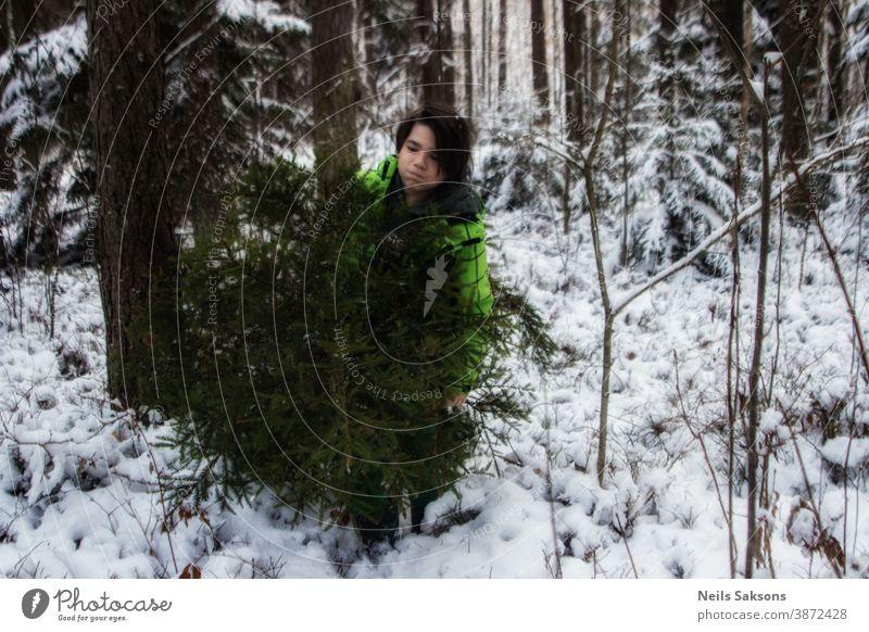 Junger Mann bringt einen Weihnachtsbaum aus dem Winterwald und überwindet Schneeverwehungen und Schneefall. Weihnachtsferien. herbringen führen Feier heiter