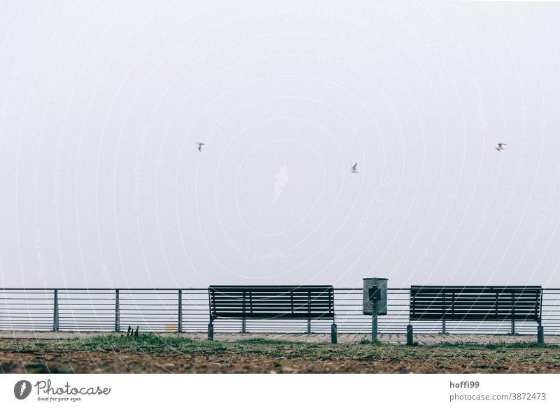ein Mülleimer , zwei Bänke und drei Möwen  im Nebel am Meer 3 2 1 Bank Herbstwetter Nebelmeer Nebelbank Winter abfallbehälter Sitzbank trist schlechtes Wetter