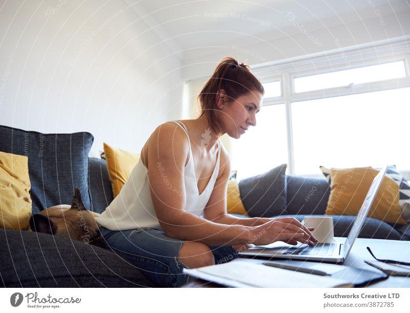 Kaffeetrinken Glück jung Frau arbeiten heimwärts Laptop Sofa 20s brünett Computer Arbeit von zu Hause aus Person schreibend im Innenbereich Schüler studierend