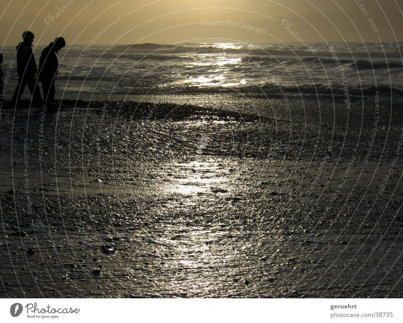 horizont in gold Kind Strand Junge Stein 2 Wellen Küste beobachten Nordsee Flut Gezeiten